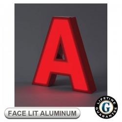 Gemini Face Lit FABRICATED ALUMINUM Sign Letters